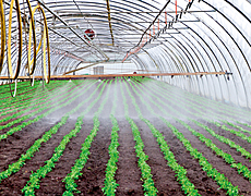 inhouse irrigation